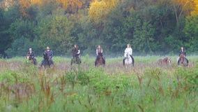Bedrijf van vrienden bij horseback het berijden in de vroege ochtend, mist stock footage