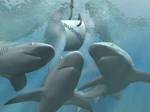 Bedrijfs haaien vector illustratie