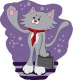 Bedrijfs vermakelijke kat Stock Fotografie