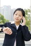 Bedrijfs vrouwen die een mobiele telefoon houden Royalty-vrije Stock Afbeeldingen