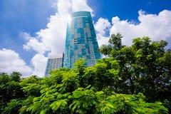 Bedrijfsbureauwolkenkrabbers met verse groene boom royalty-vrije stock afbeelding