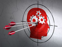Bedrijfsconcept: pijlen in Hoofd met Toestellendoel op muur Stock Afbeelding