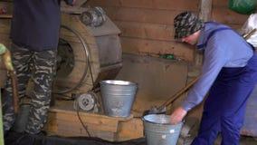 Bedrijfsmedewerker die korrel in de landbouwbedrijfbouw ziften Gezoem uit stock footage