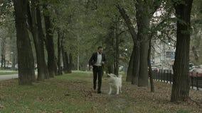 Bedrijfsmens die met speelse grote witte hond in het groene stadspark lopen stock afbeelding