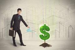 Bedrijfsmensen poring water op het teken van de dollarboom op stadsachtergrond Stock Foto's