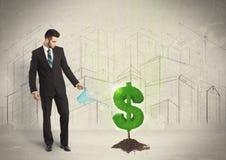 Bedrijfsmensen poring water op het teken van de dollarboom op stadsachtergrond Royalty-vrije Stock Fotografie