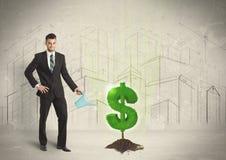 Bedrijfsmensen poring water op het teken van de dollarboom op stadsachtergrond Stock Fotografie