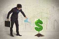 Bedrijfsmensen poring water op het teken van de dollarboom op stadsachtergrond Stock Foto