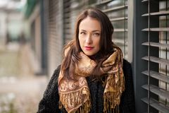 Bedrijfsvrouw die sjaal dragen stock afbeeldingen