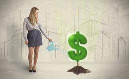 Bedrijfsvrouwen poring water op het teken van de dollarboom op stadsbackgrou Royalty-vrije Stock Foto's