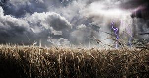 Bedrohender Himmel über Feld Stockfotografie