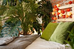 Free Bedroom For Plant Lover Stock Images - 94080414