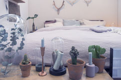Bedroom interior with decorative plants Royalty Free Stock Images