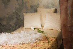 Bedroom interior in the vintage style. Refined bedroom interior in the vintage style Stock Photos