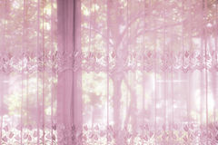 A bedroom windows dressed with striped curtain that lace drapery Royalty Free Stock Images