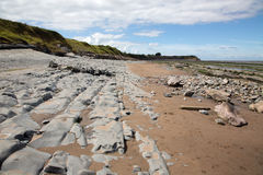 Beds of Jurassic lias stone on Doniford beach, Exmoor, UK Royalty Free Stock Photos
