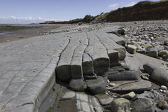 Beds of Jurassic lias stone on Doniford beach, Exmoor, UK Stock Image