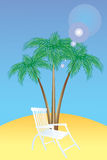 Beds and palm trees. Royalty Free Stock Photo