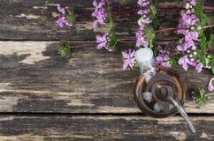 Sage flower essential oil. Bedstraw flower essential oil. Naturopathy. Herbal medicine stock photos