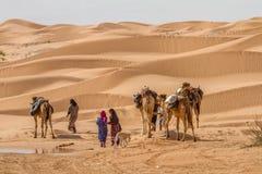 Beduíno Fotografia de Stock
