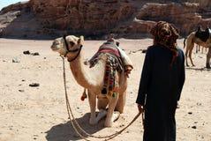 Beduíno com o camelo no deserto, Jordânia Imagens de Stock Royalty Free