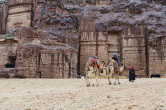 Beduiński mężczyzna i dzieciaki jedzie wielbłądy w Petra jarze Obraz Stock