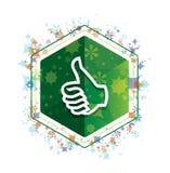 Beduimelt het patroon groene hexagon knoop van pictogram omhoog bloemeninstallaties royalty-vrije illustratie