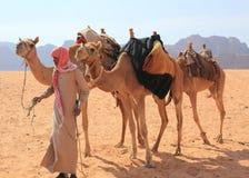 Beduin και οι καμήλες τους Στοκ φωτογραφία με δικαίωμα ελεύθερης χρήσης