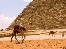 beduin Zdjęcia Royalty Free
