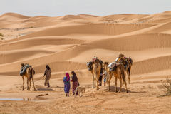 Beduin. S leave an oasis with there camels Stock Photography