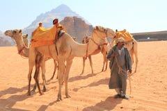 Beduin en hun kamelen Royalty-vrije Stock Afbeeldingen