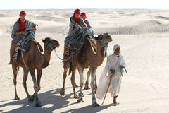 Beduin leading tourists on camels Stock Images