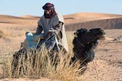 Beduin med kamlet, Marocko Royaltyfri Foto