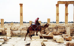 Beduin in palmyra Royalty Free Stock Photos