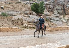 Beduin som rider en arabisk springare längs vägen som leder från Petra - huvudstaden av det Nabatean kungariket i den Wadi Musa s arkivfoto