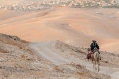Beduin som rider en kamel Royaltyfria Bilder