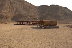 Beduin tent village in Egypt. Typical sahara nomad village tent in Egypt Royalty Free Stock Photography