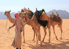 Beduin and their camels Royalty Free Stock Photo
