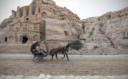 Beduine, der einen Wagen fährt Lizenzfreie Stockbilder