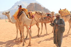 Beduinisch und ihre Kamele Stockfotos
