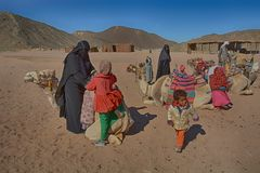 Beduinische Familien und Kamele in der Wüste, Hurghada, Ägypten lizenzfreie stockbilder
