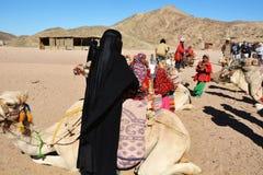 Beduinische Familien und Kamele in der Wüste, Hurghada, Ägypten stockfotografie