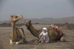 Beduinischer Junge mit seinen Kamelen lizenzfreies stockfoto