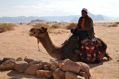 Beduino y camello Imagen de archivo libre de regalías