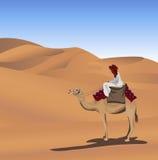 Beduino y camello