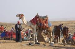 Beduino y camello Fotografía de archivo