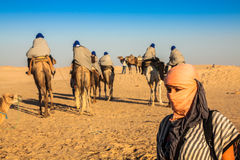 Beduins leading tourists on camels at short tourist tour around Royalty Free Stock Photography