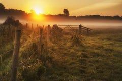 Bedöva soluppgånglandskap över dimmig engelsk bygd med G Arkivbild