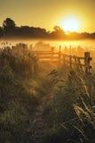 Bedöva soluppgånglandskap över dimmig engelsk bygd med G Royaltyfri Fotografi