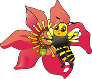 Bee. Illustration of a insect - bee Royalty Free Stock Photography